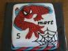 spidermantaart2
